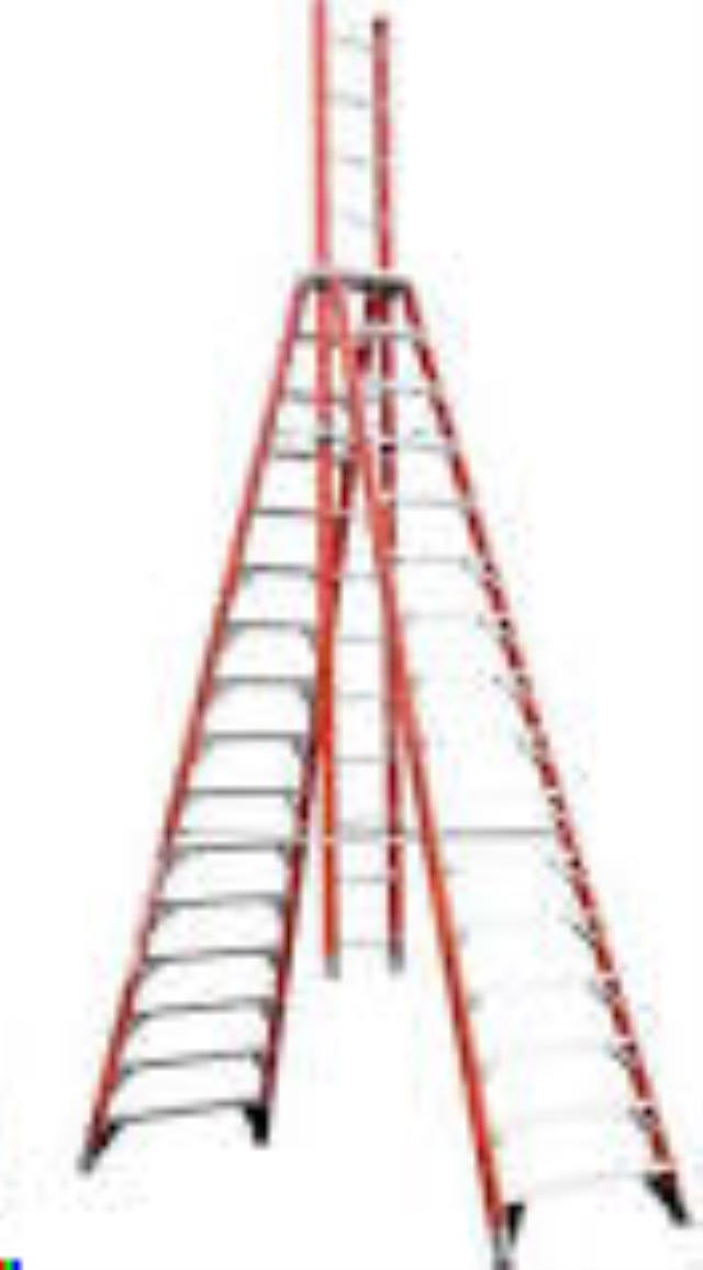 Where to find 15  EXTENSION TRESTLE LADDER in Madison